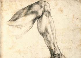 人体素描图片欣赏六