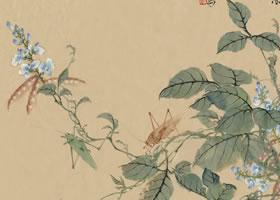 豆花国画画法范例