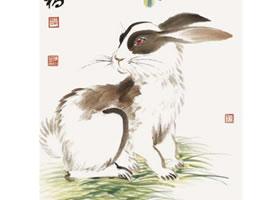 兔子的国画画法