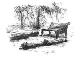 公园一角的素描绘画方法步骤