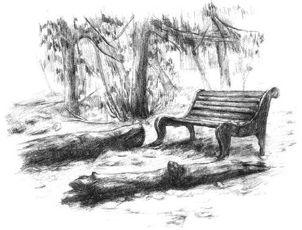 素描绘画教程-公园一角