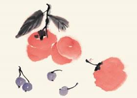 柿子和樱桃的国画画法