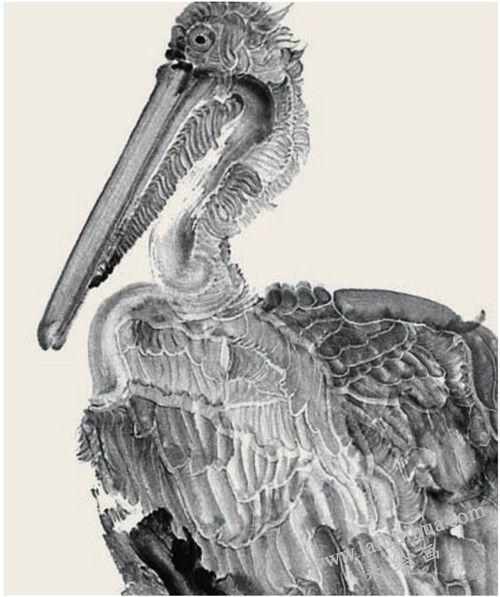 水鸟 周京新