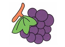 葡萄简笔画画法步骤