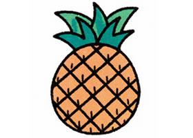 菠萝简笔画画法步骤