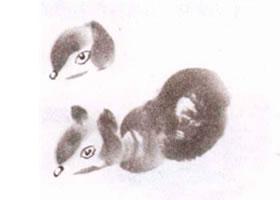松鼠的水墨画画法