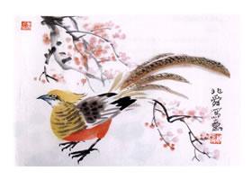锦鸡的水墨画画法