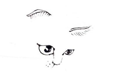 猫的眼、鼻、耳、嘴,黄猫写意画画法步骤一