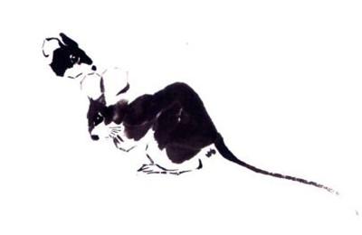 老鼠爪子,老鼠写意画画法步骤二