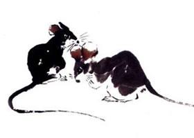 老鼠写意画画法