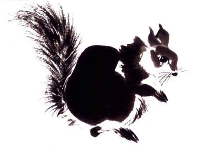 松鼠写意画画法步骤四:松鼠的尾巴