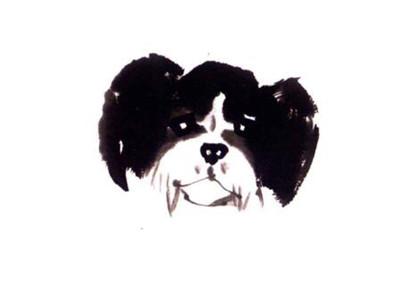 狗的写意画画法步骤二:狗的耳朵