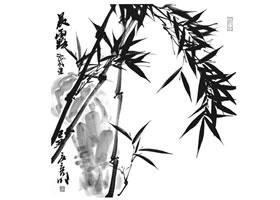 国画竹子画法步骤范例五