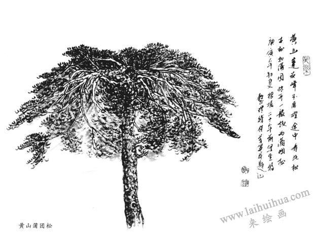 黄山团蒲松
