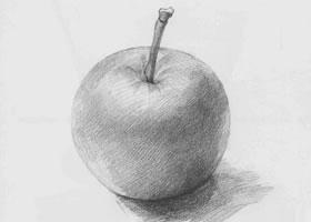 苹果素描一