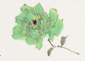 绿牡丹画法