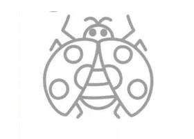 瓢虫的简笔画画法