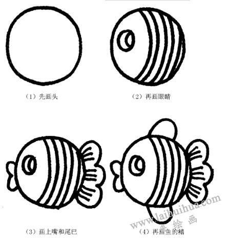 热带鱼的画法