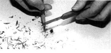 削铅笔的方法步骤06