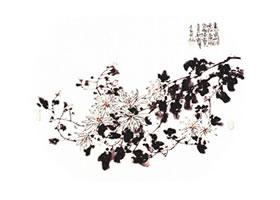 团扇菊花的画法步骤范例三