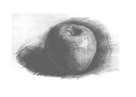 苹果素描二