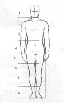 人体比例02