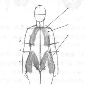 利用草图绘制人体01