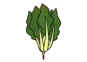 菠菜儿童画