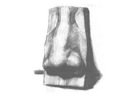 石膏鼻子素描