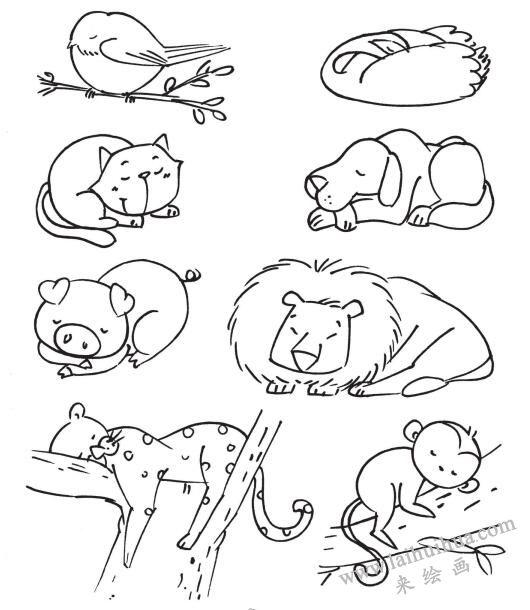 睡眠中的动物,动物简笔画