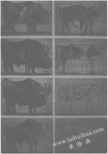 毕加索《牛的变形图》