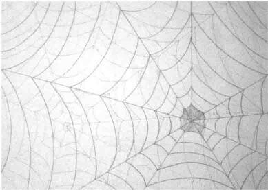 用曲线表现的作品,设计素描