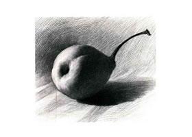 梨的素描画法