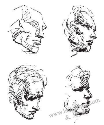 人像素描中的头部体块结构02