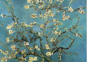 梵高《开花的杏树》油画