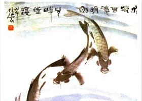 鲤鱼的国画画法