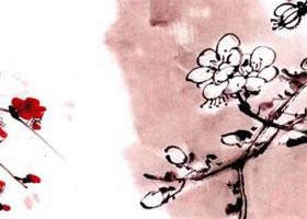 国画梅花花朵着枝画法
