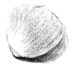 素描绘画的流程02
