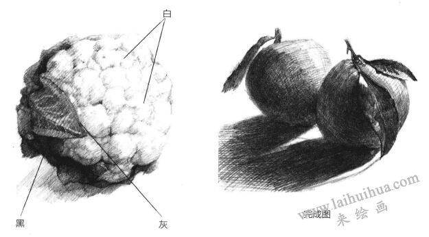 素描绘画的表现方式:黑白灰