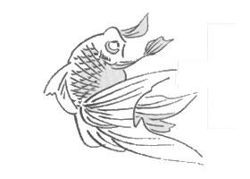 金鱼白描作品图片