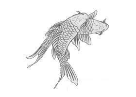 白描鲤鱼作品图片