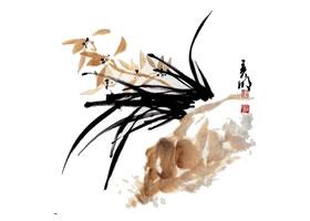 兰花的画法范画画法步骤(一)
