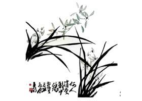 兰花的画法范画画法步骤(二)