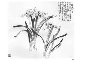 俞致贞白描水仙作品图片
