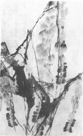 水墨画技法之点水法(藤罗花点水法)01