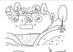 风景简笔画在教学中的运用