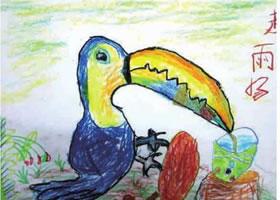 巨嘴鸟儿童画作品图片