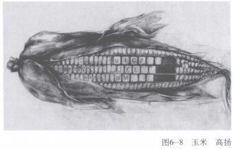 玉米,手绘创意素描