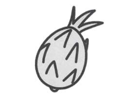 火龙果简笔画画法步骤