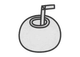 椰子简笔画画法步骤